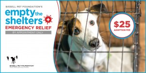 Bissell Pets Adopt Ad